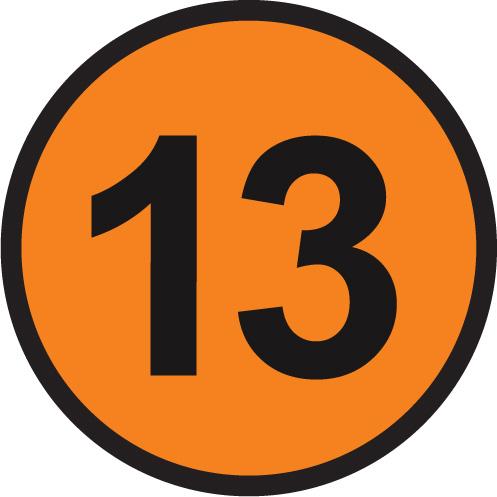 13 portocaliu