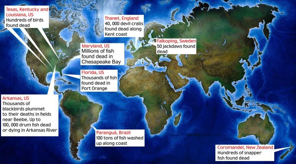 Harta zonelor cu păsări moarte